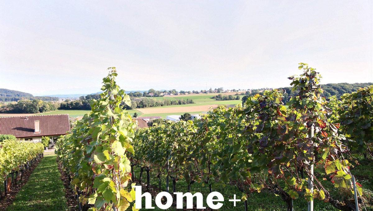 Cornaux-La Résidence de Vignes