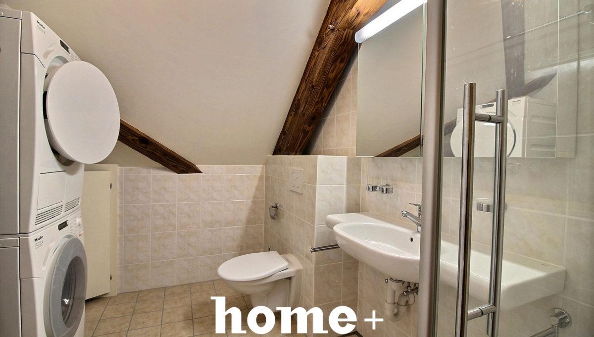 19i1548-Bex- salle d'eau